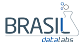 Brasil DataLabs | Digital Marketing – SEO Experts Logo